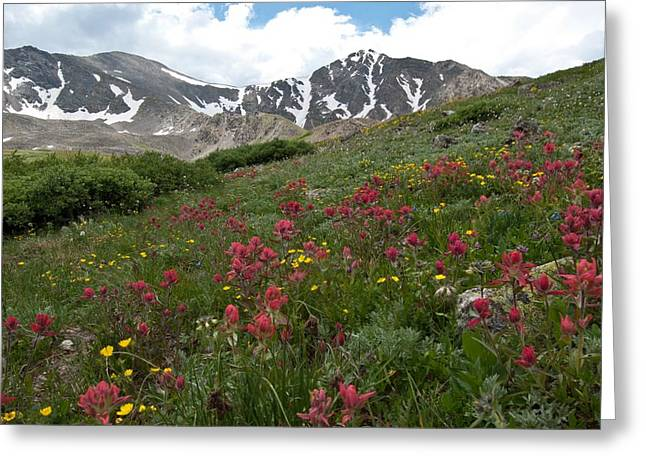 Greeting Card featuring the photograph Gray's And Torreys by Cascade Colors