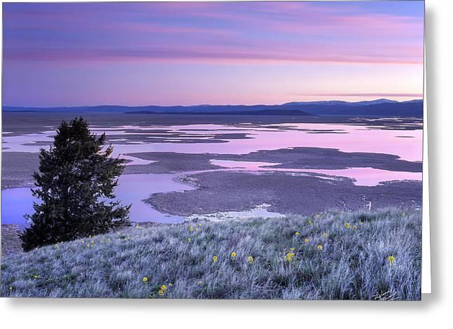 Grays Lake Sunrise Greeting Card by Leland D Howard
