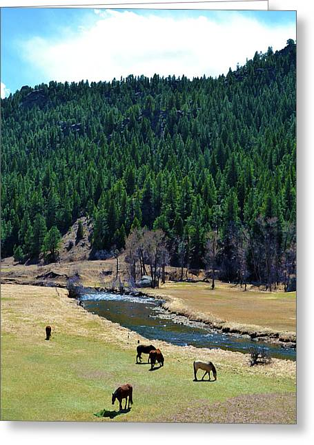 Grazing 3 Greeting Card by Angelina Vick