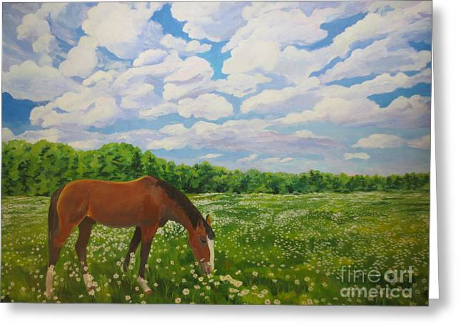 Grazing Among The Daisies Greeting Card by Stella Sherman