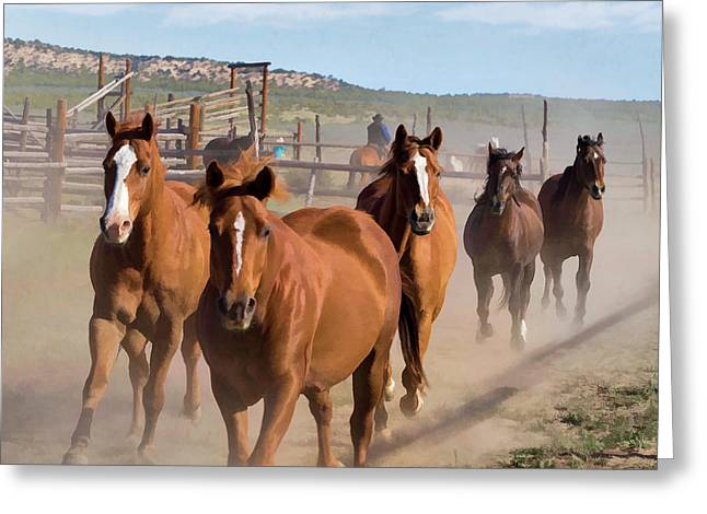 Great American Horse Drive - Coming Into The Corrals Greeting Card