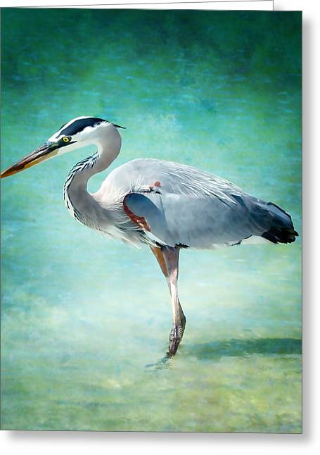 Great Blue Heron Greeting Card by Ellen Heaverlo