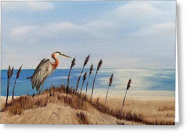 Great Blue Heron - Outer Banks Greeting Card