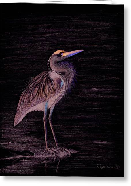 Greeting Card featuring the drawing Great Blue Heron by Phyllis Howard