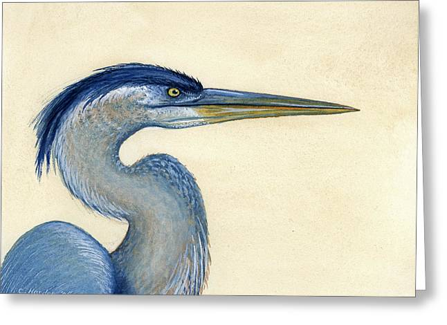 Great Blue Heron Portrait Greeting Card by Charles Harden