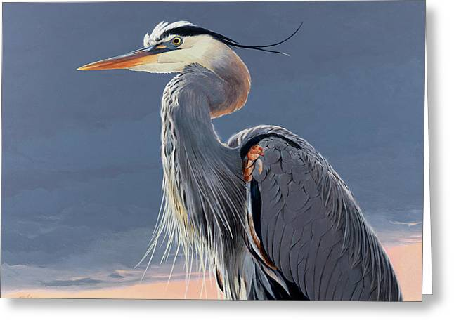 Great Blue Heron Greeting Card by Shawn Shea