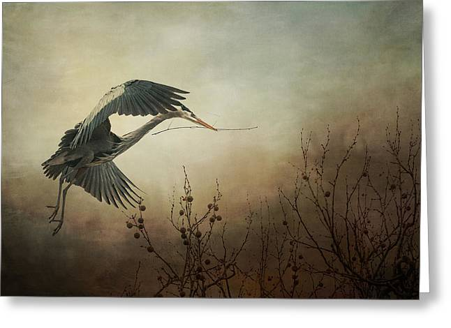 Great Blue Heron - Textured Photograph Greeting Card by SharaLee Art