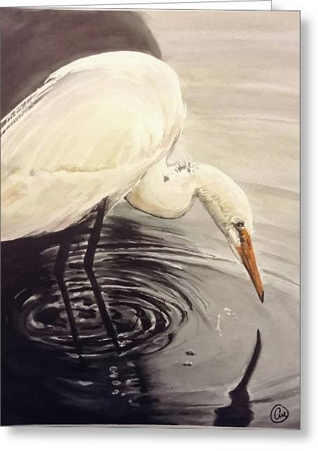 Great Egret , Mirror Greeting Card by Annie Poitras
