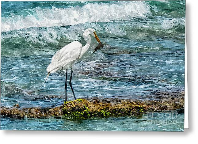 Great Egret Fishing Greeting Card