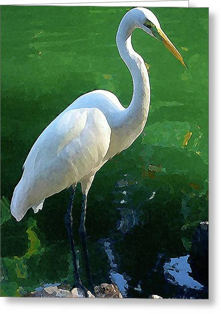 Greeting Card featuring the digital art Great Egret by Timothy Bulone
