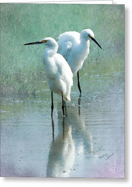 Great Egret Greeting Cards - Great Egrets Greeting Card by Betty LaRue