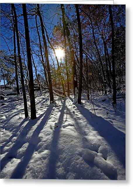 Great Falls Park Virginia After A Winter Blast Greeting Card by Brendan Reals