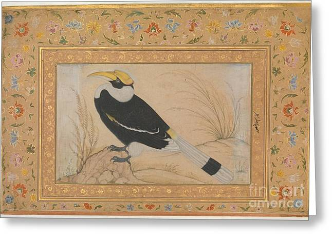 Great Hornbill Greeting Card by Celestial Images