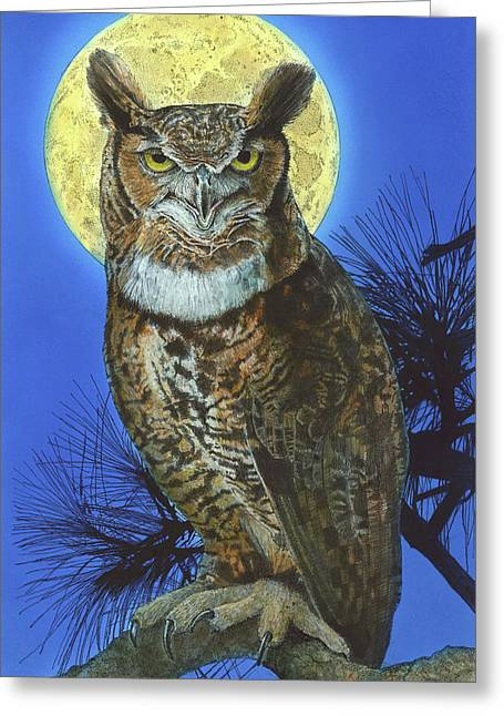 Great Horned Owl 2 Greeting Card