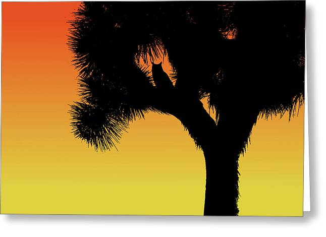 Great Horned Owl In A Joshua Tree Silhouette At Sunset Greeting Card