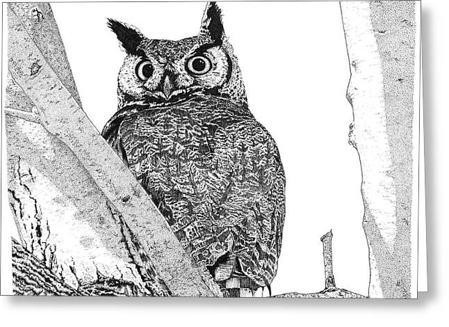 Great Horned Owl In A Tamarisk Greeting Card