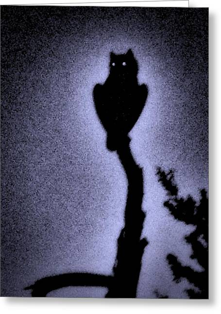 Great Horned Owl In The Desert 4 Greeting Card