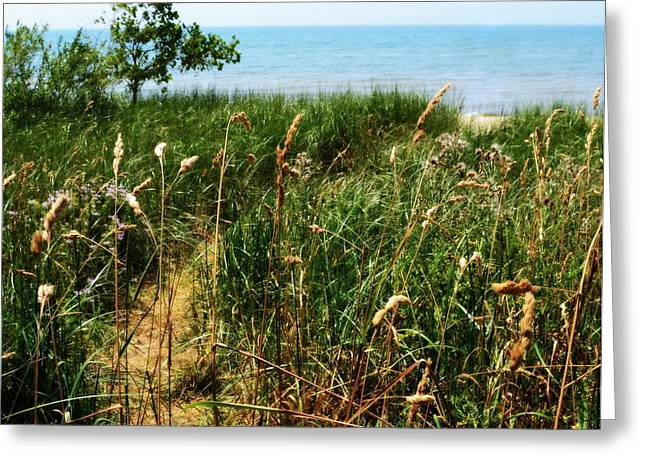 Greeting Card featuring the photograph Great Lake Beach Path by Michelle Calkins