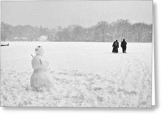 Greeting Card featuring the photograph Great Lawn Blizzard 2008 by Dave Beckerman