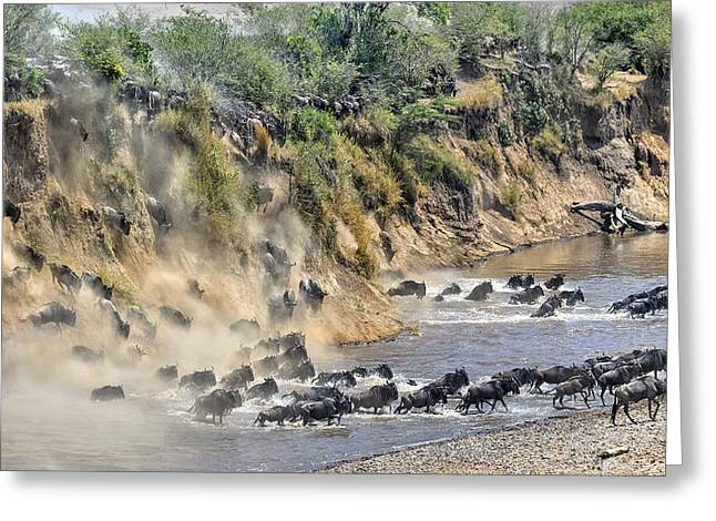 Great Migration Greeting Card by Hua Zhu