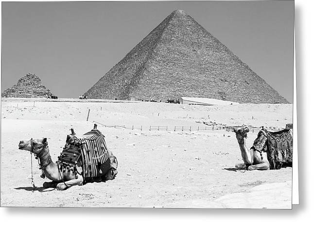 Greeting Card featuring the photograph great pyramids of Giza by Silvia Bruno