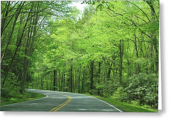 Great Smokey Mountains Greeting Card