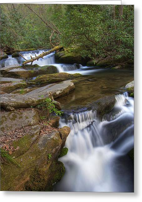 Great Smoky Mountain National Park Cascades Greeting Card by Brendan Reals
