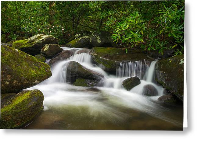 Great Smoky Mountains Gatlinburg Tn Roaring Fork Waterfall Nature Greeting Card by Dave Allen