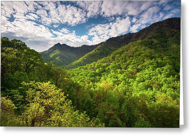 Great Smoky Mountains Gatlinburg Tn Spring Scenic Landscape Greeting Card by Dave Allen