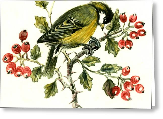Great Tit On Hawthorn Greeting Card