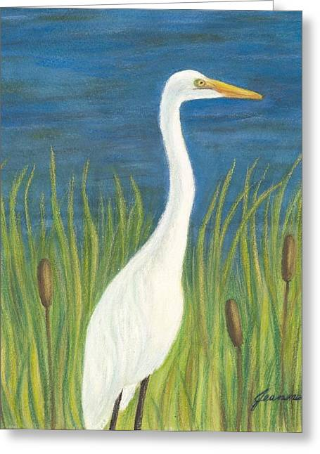 Great White Egret By Pond Greeting Card
