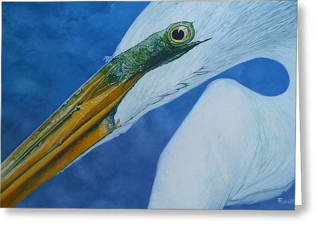 Great White Egret Greeting Card by Jon Ferrentino