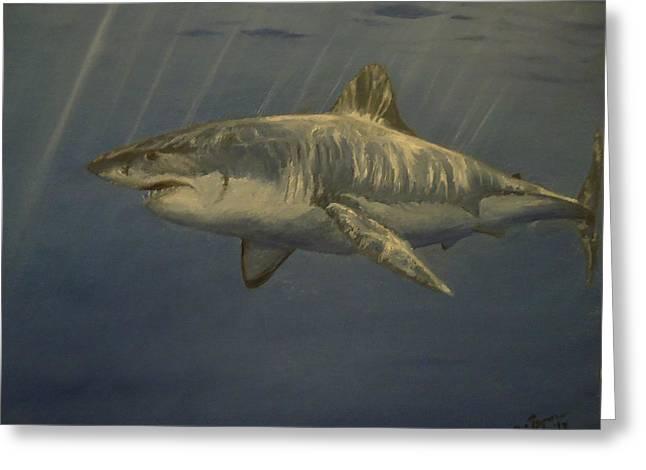 Great White Shark Greeting Card by Alexandros Tsourakis