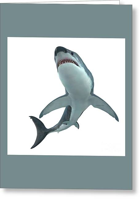 Great White Shark Cruising Greeting Card by Corey Ford