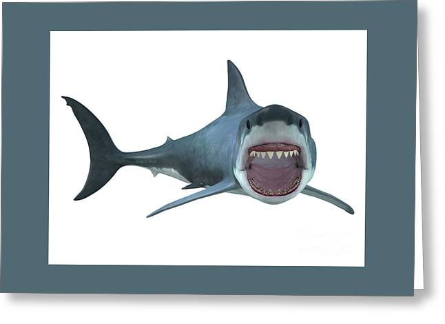 Great White Shark Right Turn Greeting Card