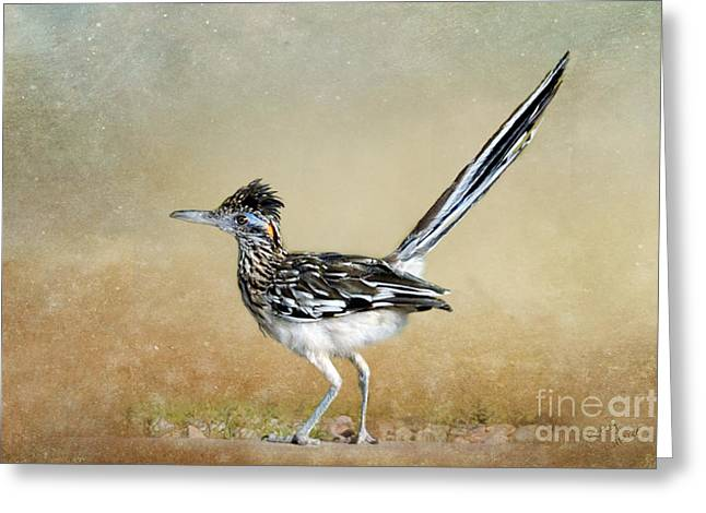 Greater Roadrunner 2 Greeting Card by Betty LaRue