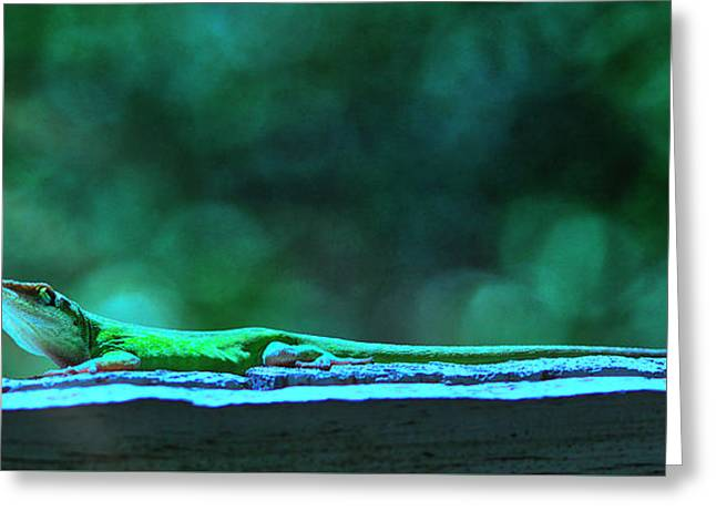 Greeting Card featuring the digital art Green Anole Lizard by Randy Bayne