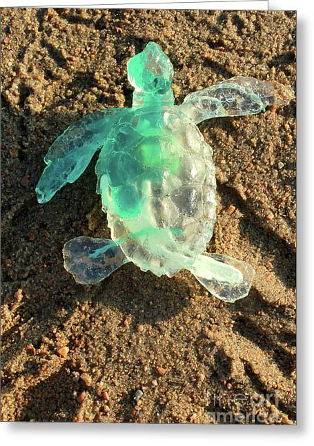 Green Baby Sea Turtle From The Feral Plastic Series By Adam Long Greeting Card