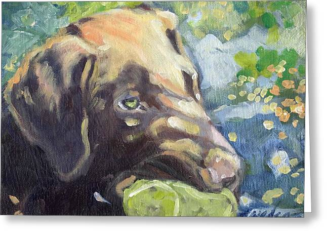 Chocolate Lab Greeting Cards - Green Ball Greeting Card by Sheila Wedegis