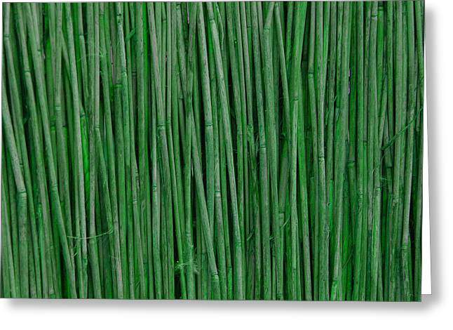 Bamboo Fence Greeting Cards - Green Bamboo Greeting Card by Rajendra Pisavadia