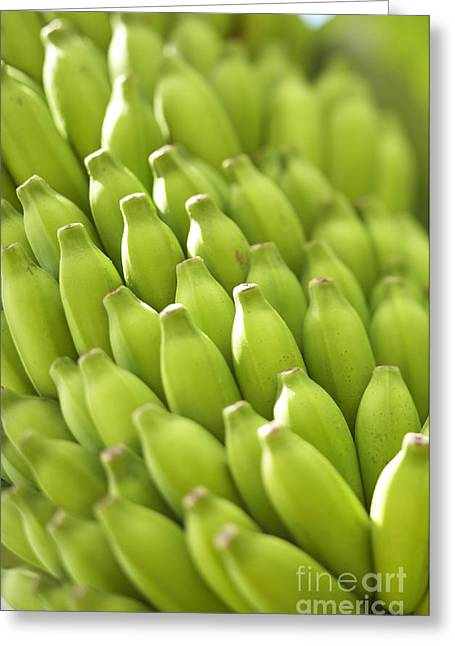 Green Banana Bunch Greeting Card by Kyle Rothenborg - Printscapes