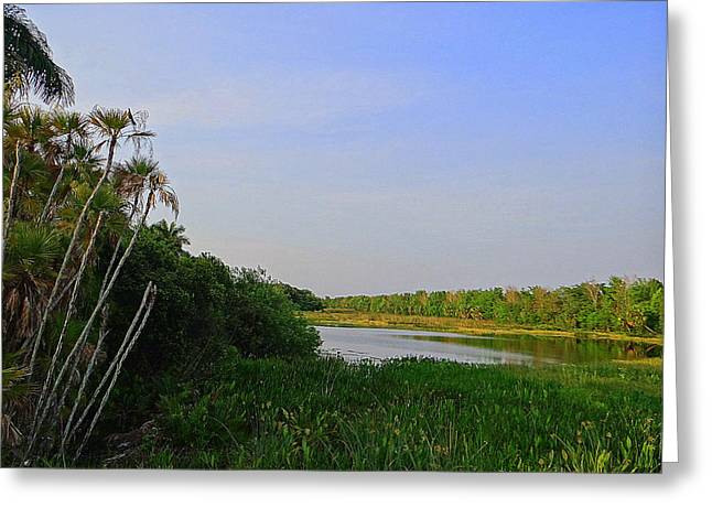 Greeting Card featuring the photograph Green Cay Landscape Photography by David Mckinney