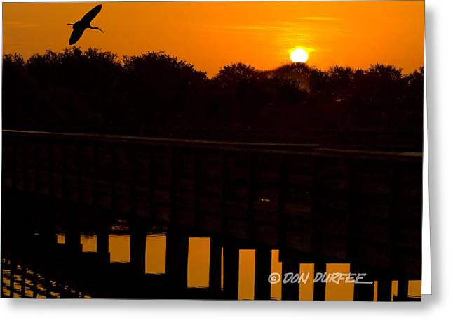 Greeting Card featuring the photograph Green Cay Sunrise by Don Durfee
