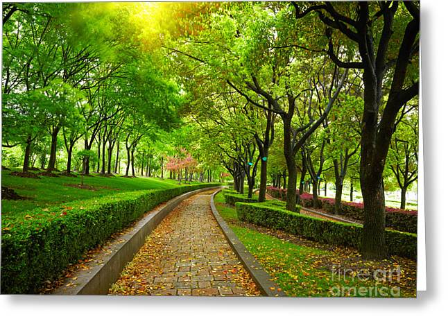 Green City Park. Shanghai, China Greeting Card by Caio Caldas