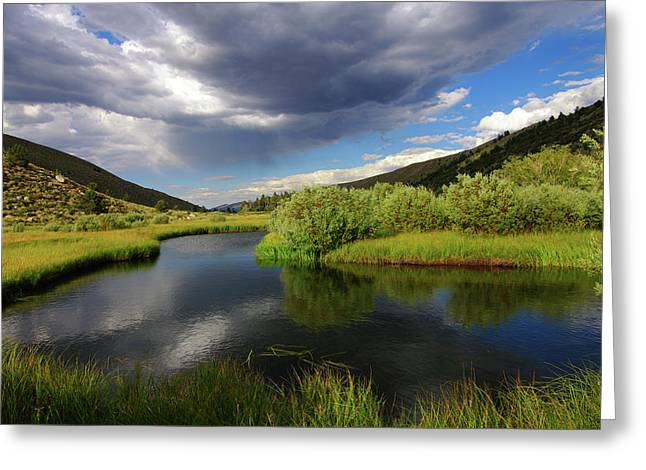 Green Creek By Frank Hawkins Greeting Card