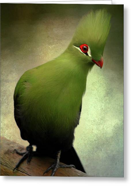 Green Crested Parrot Art Greeting Card by Georgiana Romanovna