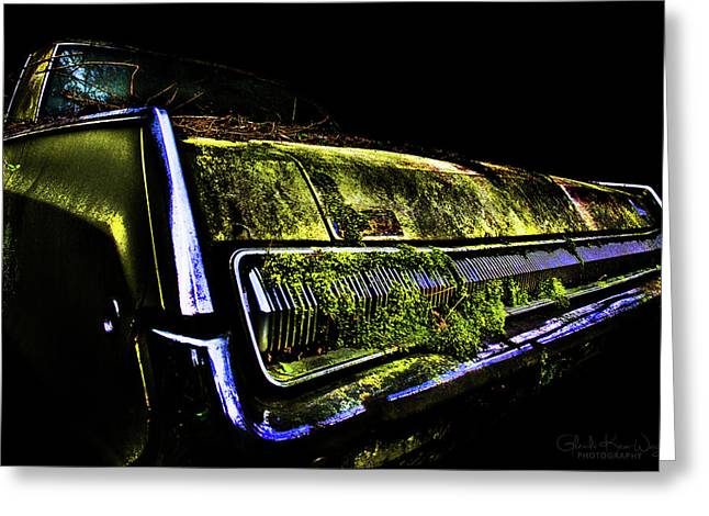 Greeting Card featuring the photograph Green Dodge Glory by Glenda Wright