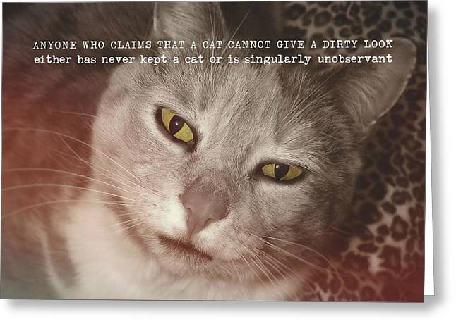 Green Eyed Glare Quote Greeting Card by JAMART Photography
