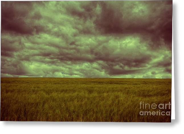 Greeting Card featuring the photograph Green Fields 3 by Douglas Barnard