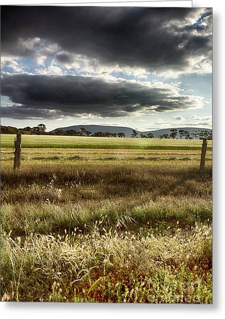 Greeting Card featuring the photograph Green Fields 6 by Douglas Barnard